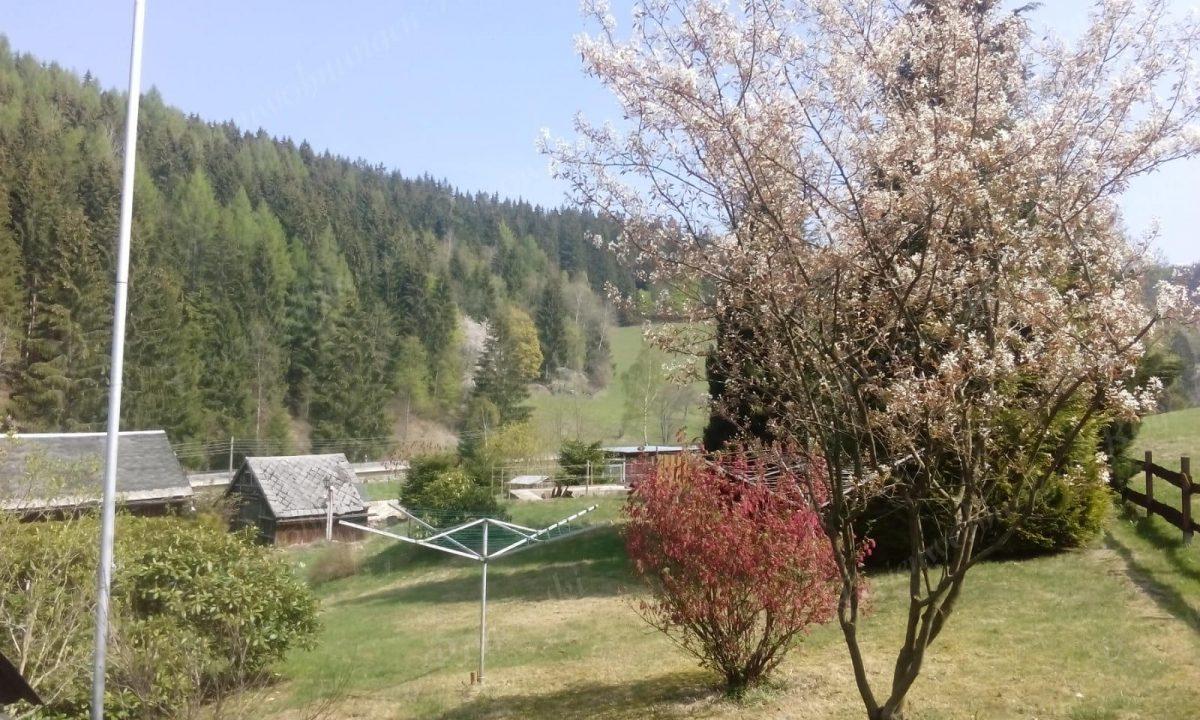 das obere Erzgebirge im Frühling