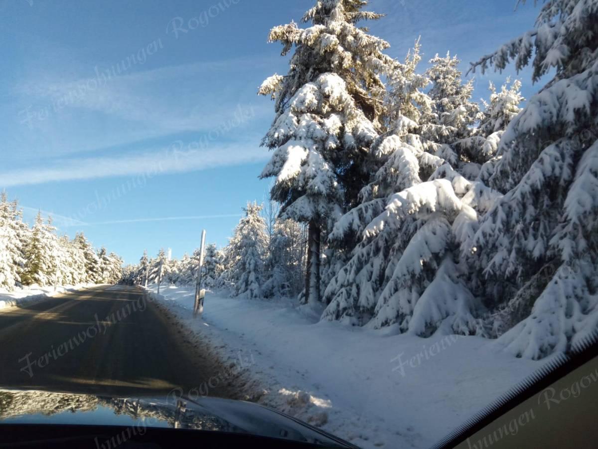 Auffahrt zum verschneiten Fichtelberg