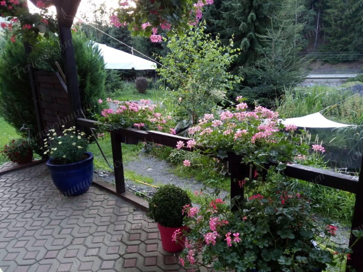 im Hintergrund Zufahrtsstr. nach Oberwiesenthal