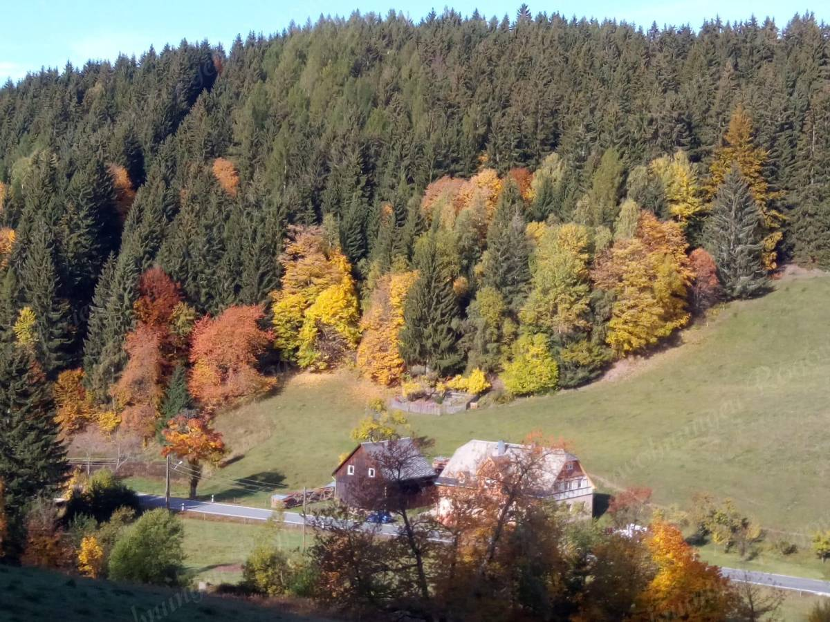 Herbstidylle in Ehrenzipfel