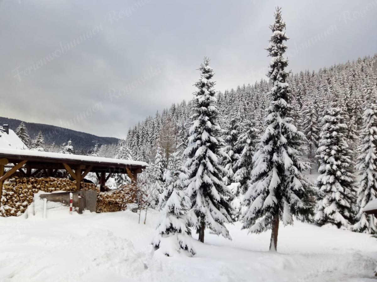Winterlandschaft in Ehrenzipfel